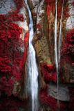 Lied der Erde Fotografie-Druck von Philippe Sainte-Laudy