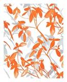 Premonition Orange Plakater af Jacqueline Maldonado