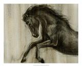 Dynamic Stallion II Premium Giclee Print by Ethan Harper