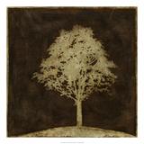 Gilded Tree II Premium-giclée-vedos tekijänä Megan Meagher