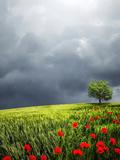 Landscape Nature Style Prints by  Wonderful Dream