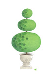 Three Tiered Topiary Tree with Vine in Pot Art