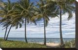 Beach Palms Impressão em tela esticada por Mary Lou Johnson