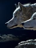 Fantasy Animal Wolf Wolves Reproduction procédé giclée par  Wonderful Dream