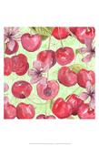 Cherry Medley II Print by Leslie Mark