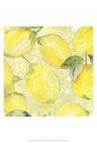 Lemon Medley II Prints by Leslie Mark