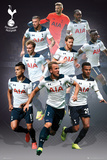 Tottenham- Players 16/17 Posters