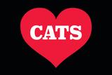 Heart (Love) Cats Fotografia por  Ephemera