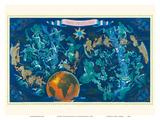 Zodiac Constellations - Star Planisphere Poster von Lucien Boucher
