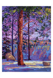 The North Rim I Posters by Erin Hanson
