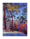 The North Rim II Print by Erin Hanson