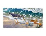 Derrières de plage Posters par Randy McGovern