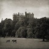 Belvoir Castle Horses Giclee Print by Pete Kelly