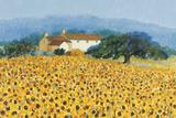 Farm Near Siena Giclee-trykk av Hazel Barker