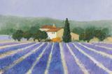 Lavender Field Near St Tropez Giclee Print by Hazel Barker