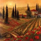 Poppies Of Toscano I Plakater av Art Fronckowiak