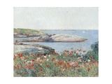 Poppies, Isles of Shoals, America, 1891 Giclee Print by Childe Hassam