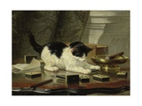 The Cat at Play, by Henriette Ronner, C. 1860-78, Belgian-Dutch Painting on Panel Giclee Print by Henriette Ronner