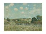 Meadow, 1875 Giclee Print by Alfred Sisley