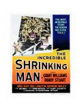 The Incredible Shrinking Man, 1957 Giclée-Druck