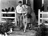 The Birds, Rod Taylor, Tippi Hedren, Jessica Tandy, 1963 Fotografia