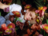 The Wizard of Oz, Judy Garland, 1939 Foto