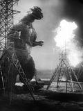 Godzilla, (AKA Gojira), Godzilla, 1954 Foto