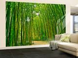 Bamboo Forest Non-Woven Vlies Wallpaper Mural Wallpaper Mural