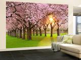 Cherry Tree Garden Non-Woven Vlies Wallpaper Mural Mural de papel pintado