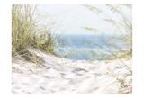 Coastal Photograpy Textured Plakater