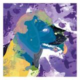 Dog in Color 3 Posters av Kimberly Allen