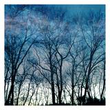 Blue Mountain Posters por Sheldon Lewis