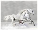 Winter Gallop Arte por V. Makarova