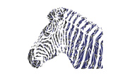 Zebra Poster by Cristian Mielu