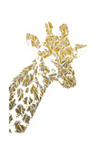 Giraffe Lámina por Cristian Mielu