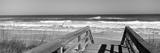 Boardwalk Leading Towards a Beach, Playlinda Beach, Canaveral National Seashore, Titusville Fotografisk tryk