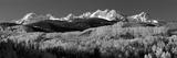 Usa  Colorado  Rocky Mountains  Aspens  Autumn