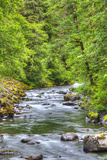 Sol Doc River, Olympic National Park, UNESCO World Heritage Site Photographic Print by Richard Maschmeyer
