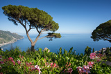 Villa Rufolo, Ravello, Costiera Amalfitana (Amalfi Coast), UNESCO World Heritage Site, Campania Fotografisk trykk av Frank Fell
