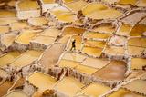 Worker Mining for Salt, Salineras De Maras, Maras Salt Flats, Sacred Valley, Peru, South America Fotografisk trykk av Laura Grier
