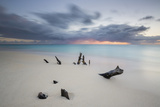 Caribbean Sunset Frames Tree Trunks on Ffryes Beach, Antigua, Antigua and Barbuda Impressão fotográfica por Roberto Moiola