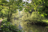 River Wye Lined by Trees in Spring Leaf with Riverside Track, Reflections in Calm Water Photographic Print by Eleanor Scriven