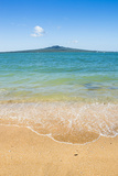 Rangitoto Island, Hauraki Gulf, Auckland, North Island, New Zealand, Pacific Fotografisk trykk av Matthew Williams-Ellis