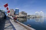 Harbour Walk, Halifax, Nova Scotia, Canada Foto von Natalie Tepper