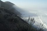 Pacific Coast Near Westport, Northern California Fotografía por Natalie Tepper