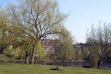 One of the Highgate Ponds, Hampstead Heath, London Fotografía por Natalie Tepper