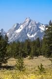 Grand Teton National Park, Teton County, Wyoming, Usa Fotografisk tryk af John Warburton-lee