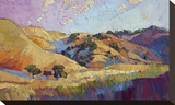 Color Lush Stretched Canvas Print by Erin Hanson
