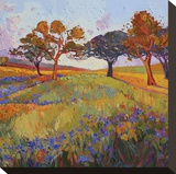 Colors of Brenham (center) Stretched Canvas Print by Erin Hanson
