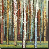 Brilliant Forest 2 Stretched Canvas Print by Julie Joy